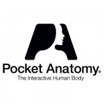 Pocket-Anatomy